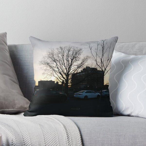 House Throw Pillow
