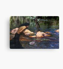 Reflecting on the Lotus Canvas Print