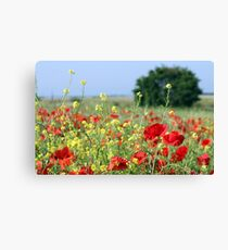 spring meadow with wild flowers and tree Canvas Print