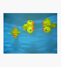 Ducky Photographic Print