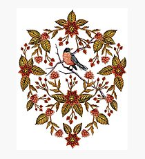 New Beginnings - Spring/Summer Floral Pattern With Robins, Branches & Flowers Photographic Print