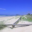 Mermaid Beach ,My special spot by Virginia McGowan