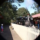 Puffing billy # 7 by Virginia McGowan