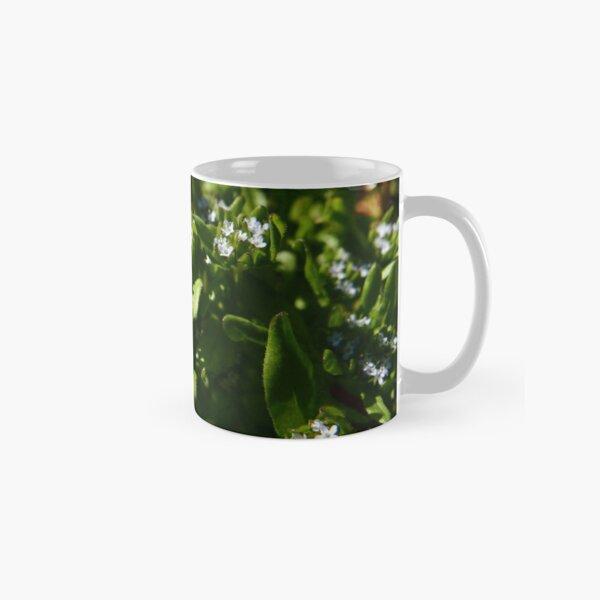 Common Cornsalad (Valerianella locusta) Classic Mug
