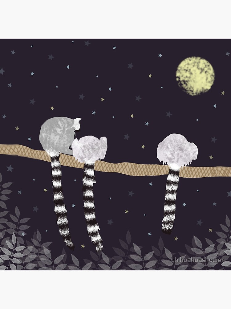 Lemurs by chihuahuashower