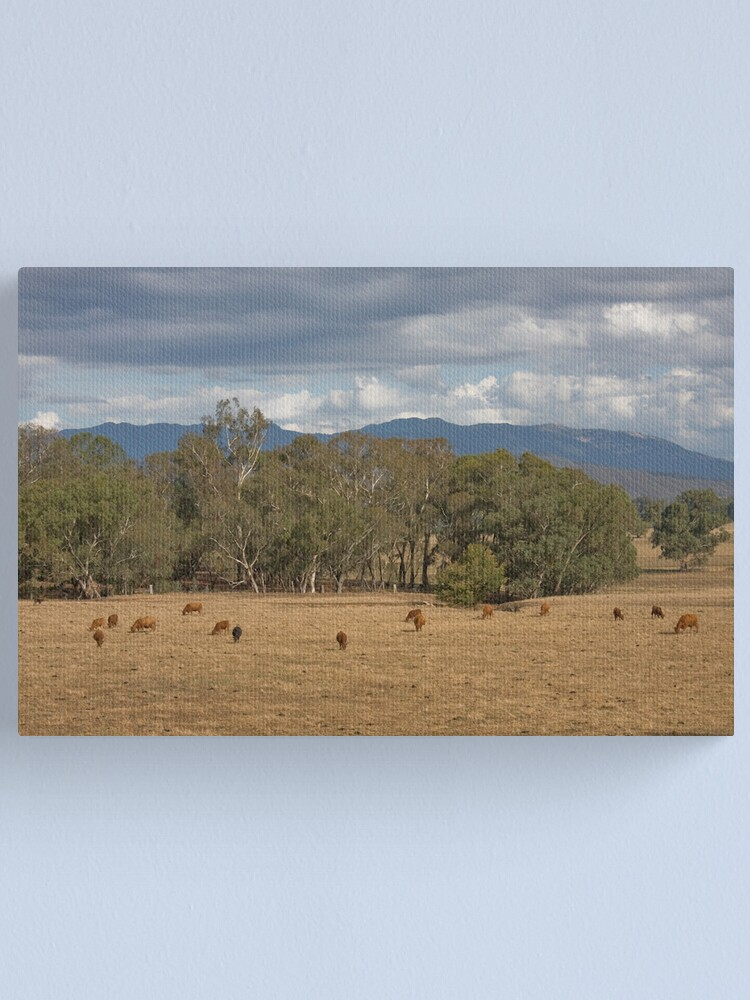 Alternate view of Myrtleford Victoria Australia Canvas Print