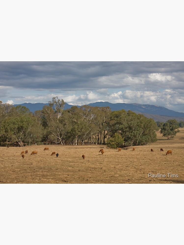 Myrtleford Victoria Australia by serendipity