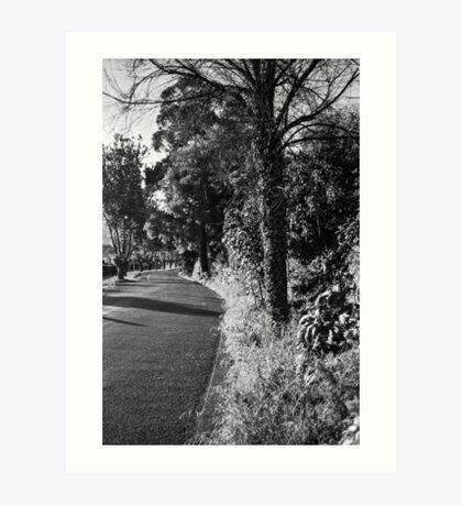 A Road in Hobart Art Print