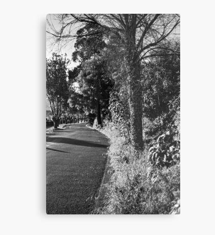 A Road in Hobart Metal Print