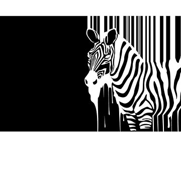 Zebra Paint Splash by damony007