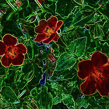 Photoshopped Flower 8 by yvonnecarsley
