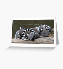 Love and cuddles from Adelaide, S.A. Greeting Card
