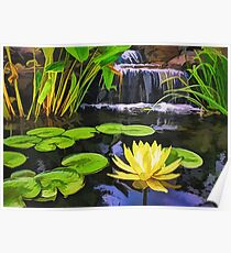 Lily pads and Flower Poster