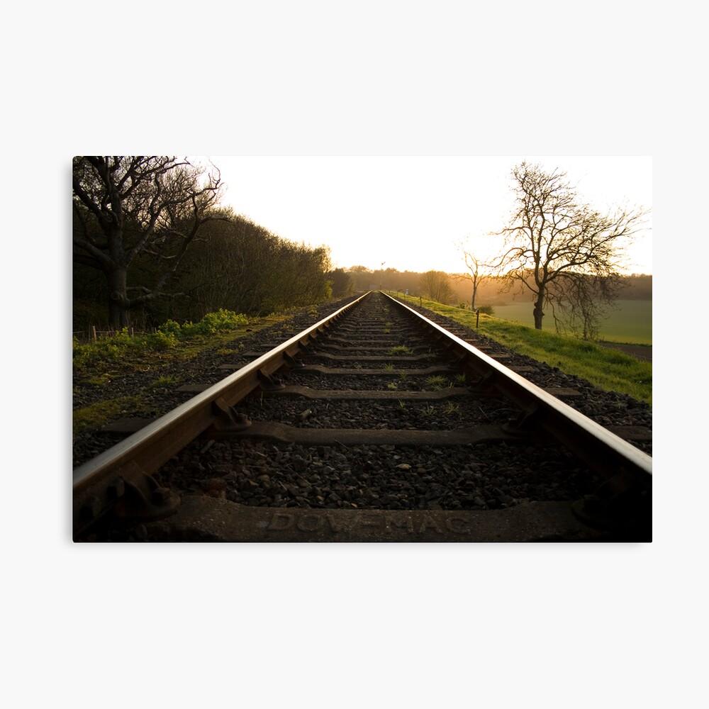 On The Tracks At Kelling Heath Canvas Print