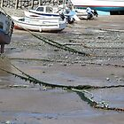 Chains, Weeds and Boats by kalaryder