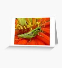 Happy Hopper Greeting Card