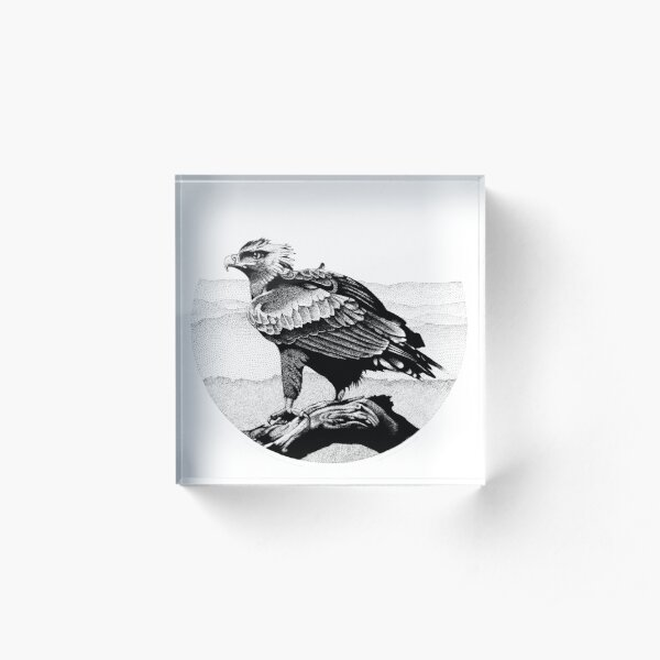 Wedge-tailed Eagle in Pen and Ink Acrylic Block