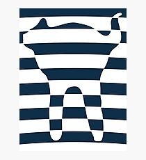 Oval stripped blue cat Photographic Print