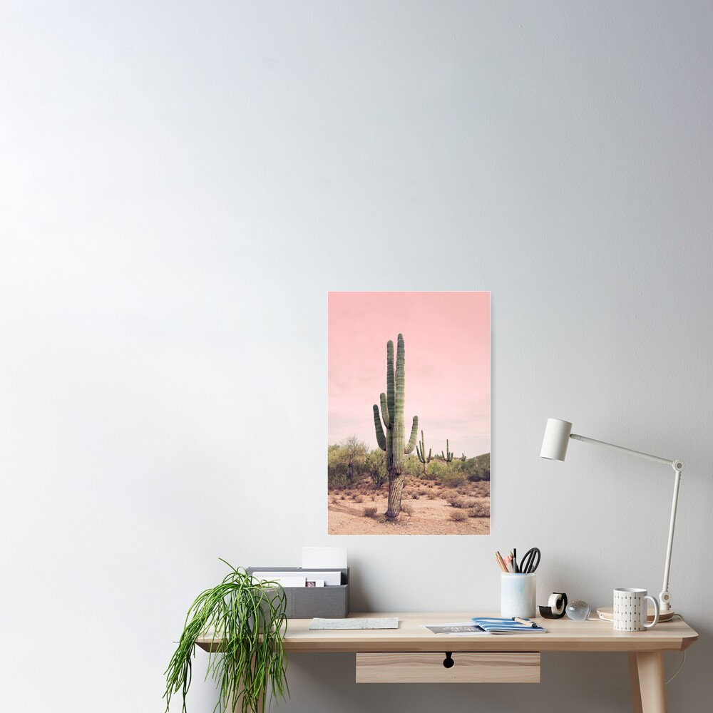 Blush sky  Poster