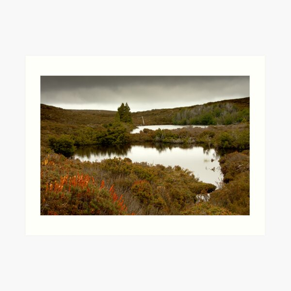 Waterfall Valley to Windermere, Overland Track, Tasmania Art Print