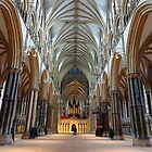 Lincoln Cathedral by trish725