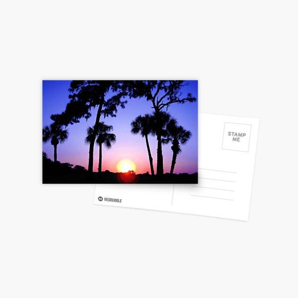 Sunset Vivid Postcard
