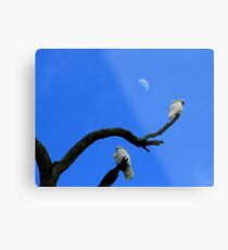 Under the moon Metal Print