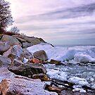 Icy Drama by Debbie Stobbart
