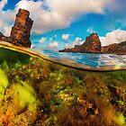 Split Level Colorful Algae And Rocks by davinci-blue