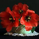 red tulips by dagmar luhring