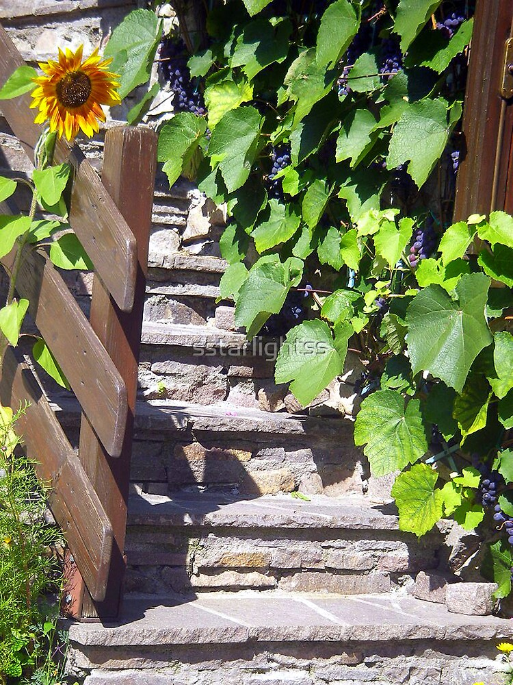 Sunflower and Grapes in the Sun by sstarlightss