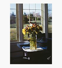 Flowers in the Sun Photographic Print
