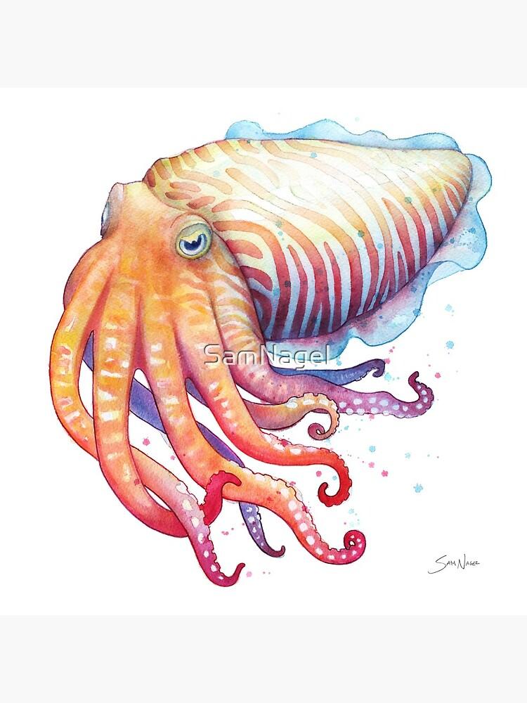 Cuttlefish by SamNagel
