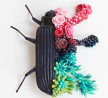 Beetle and Flowers, Surrealistic Art by Stephanie KILGAST