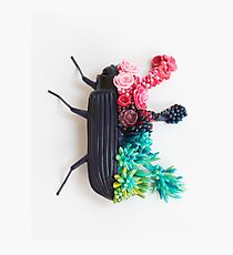 Beetle and Flowers, Surrealistic Art Photographic Print