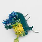 Teal Beetle and Corals in Seaside Colors by Stephanie KILGAST