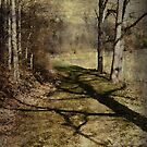Long Shadow by vigor