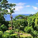 A beautiful view from the Deshaies Botanical Garden by Timothy Gass