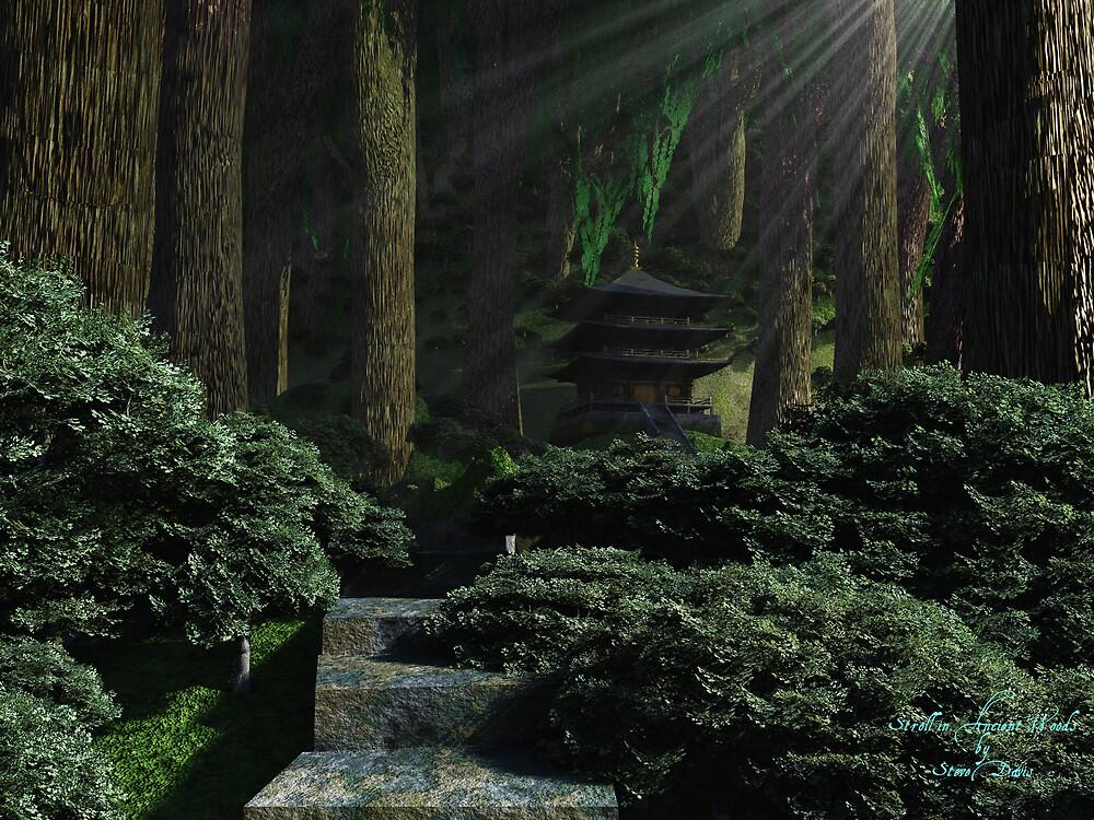 Stroll in Ancient Woods by Steve Davis