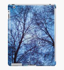 Bare Trees iPad Case/Skin