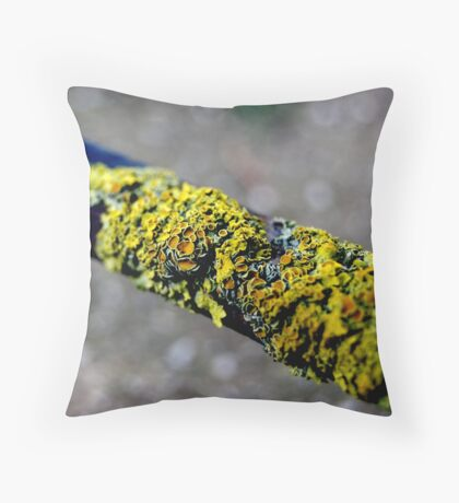 untitled #25 Throw Pillow