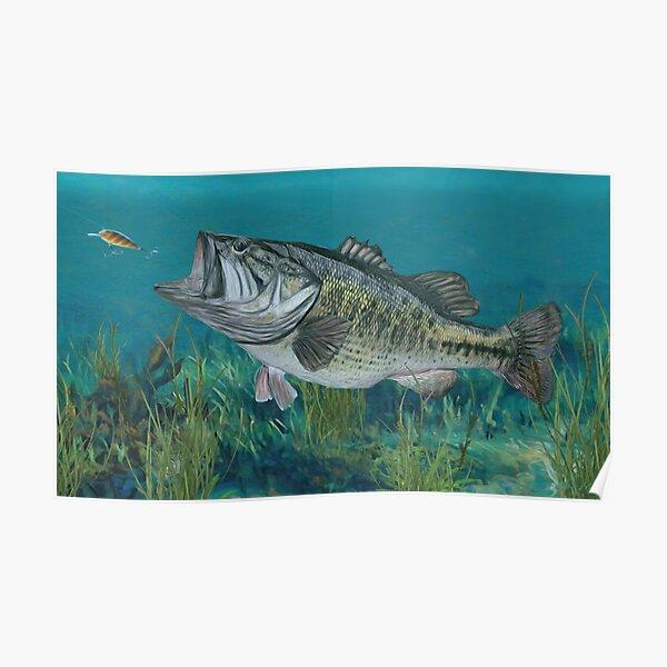 Largemouth Bass Poster