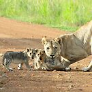 Motherly Love by Leon Rossouw