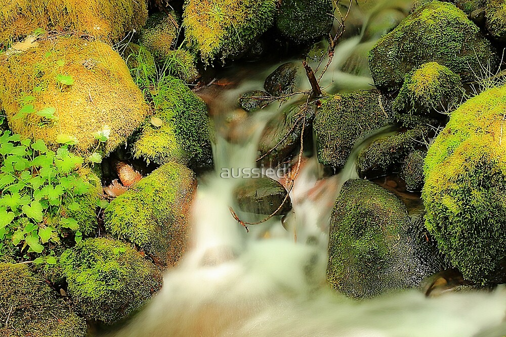 Mossy Rocks with Water by aussiedi