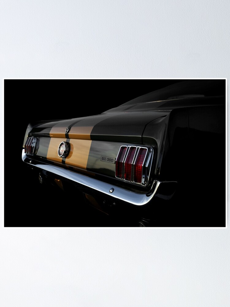 SHELBY MUSTANG GT 350 1966 LONG SLEEVE