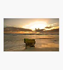 The Sacred Moss Rock Photographic Print