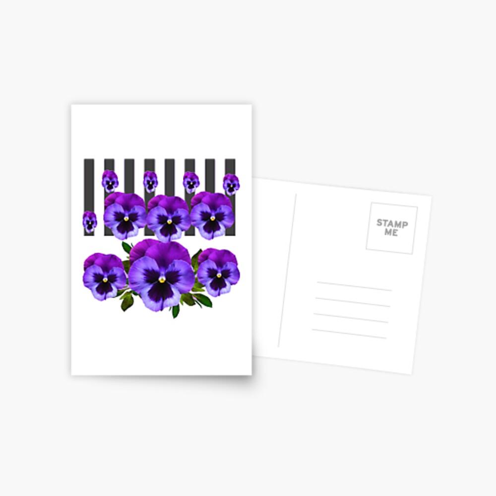 WEISSE LILA & PURPLE PANSY BLUMEN Postkarte