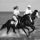 Sea Horses by wildimagenation