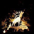 reindeer display by Perggals© - Stacey Turner