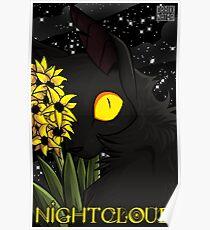 Nightcloud Portrait Poster